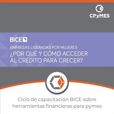 Ciclo de capacitación BICE sobre herramientas financieras para pymes
